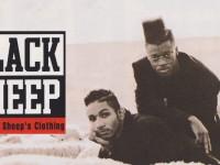 blacksheep_WEB